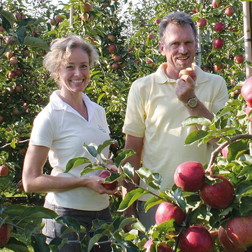Regionale Äpfel & Birnen