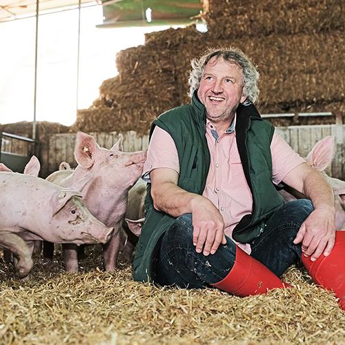 Regionales Schweinefleisch